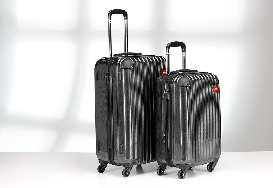 Bed Bug Killing Luggage Sharper Image