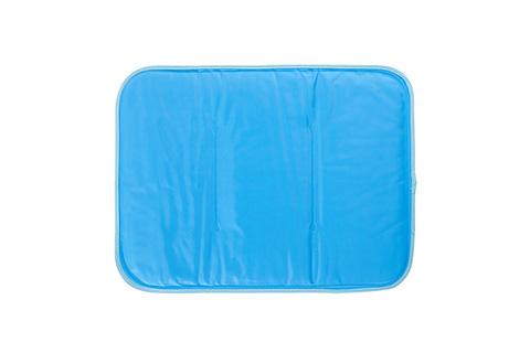Pillows Sharper Image